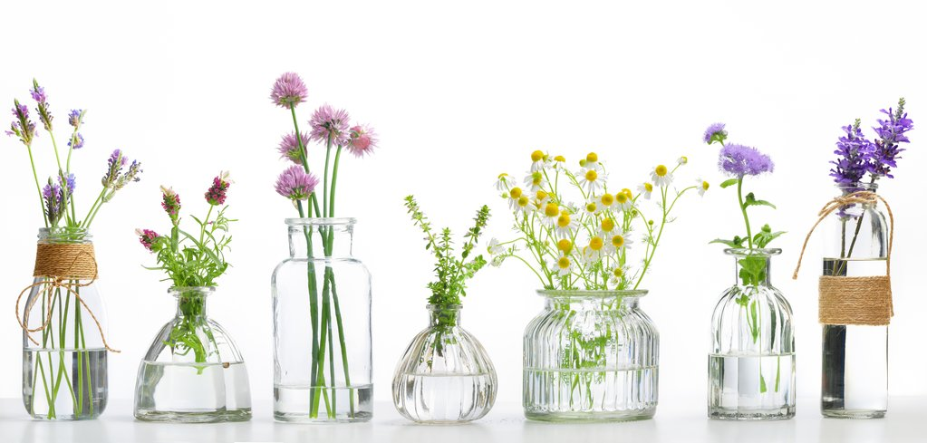 fleurs flacons